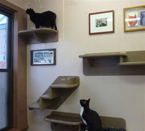 13 best images about cat furniture on pinterest cat