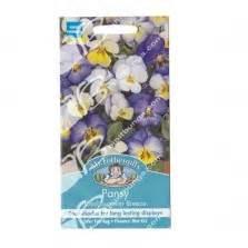 Benih Bunga Mr Fothergills Import Cornflower Blue benih nemesia blue gem 500 biji mr fothergills