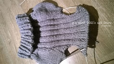 Strickanleitung Hundepullover Chihuahua by Diy F 252 R Hunde Hundepullover Selber Stricken About Dogs