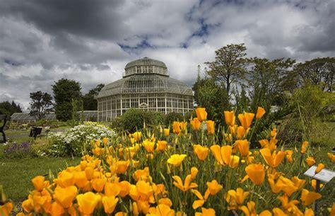 national botanic gardens hotel near botanic gardens national botanic gardens
