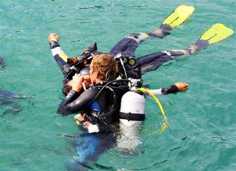 padi dive courses padi dive courses learn to dive pattaya thailand