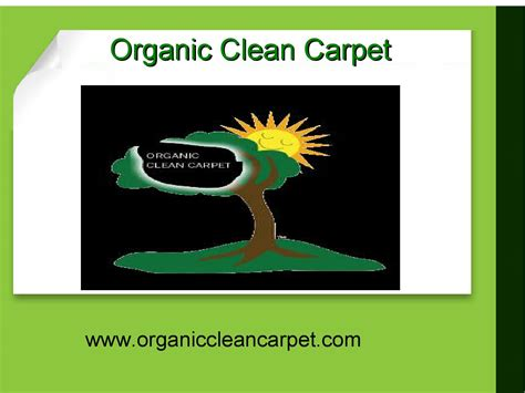Which Carpet Cleaning Company Is Non Toxic - organic carpet cleaning services new york by wayne barnes