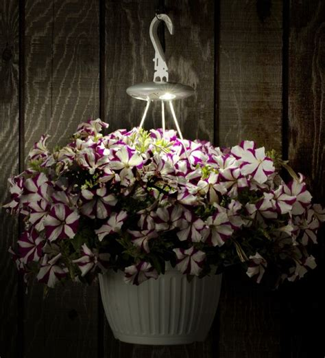 solar light hanging baskets pin by weiss on garden
