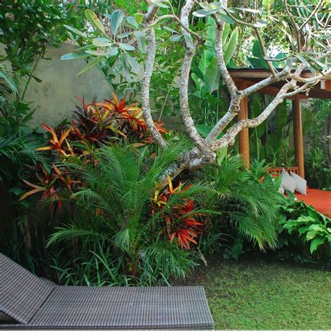 Garten Tropisch Gestalten by Best 25 Tropical Garden Design Ideas Only On
