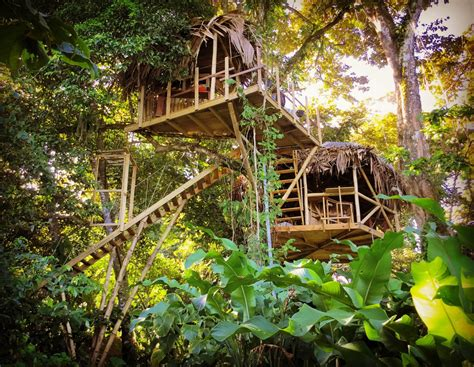 the jungle party house see the pictures of an incredible treehouse you can rent in panama