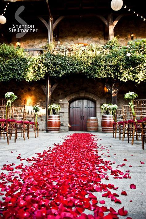 Best 25  Wedding walkway ideas on Pinterest   Backyard