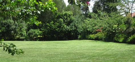 Rock City Gardens Kenya East Africa S Capital Nairobi City Photo Gallery Page 39 Jamiiforums The Home Of Great