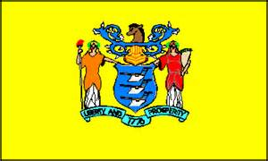 new jersey state colors new jersey state flag buy top quality new jersey state flags