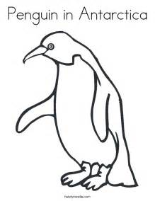 antarctica coloring pages gallery for gt antarctic animals coloring pages