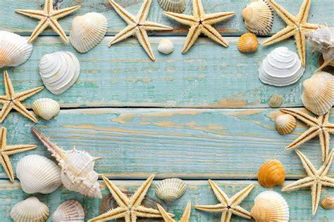 imagenes vintage mar quadro de conchas do mar na madeira gasto vintage