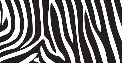 16 vector animal print images animal print vector zebra stripes vector www imgkid com the image kid has it
