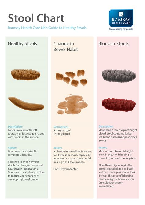 Stool Colour Changes by How Your Poo Could Reveal A Lot About Your Health