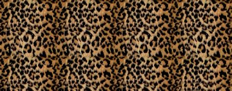 Animal Print Covers by Cheetah Print Covers