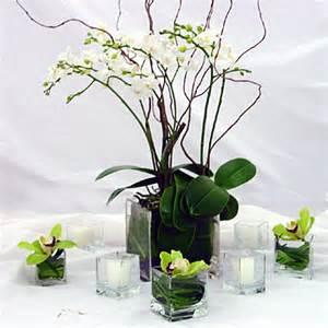 centerpieces with orchids duranleau designs potted orchids centerpieces
