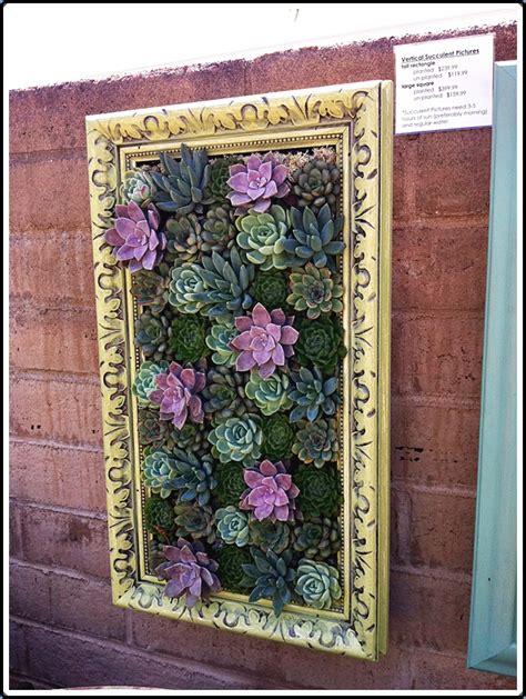 Succulent Frame My Farmscape - our house framed succulents