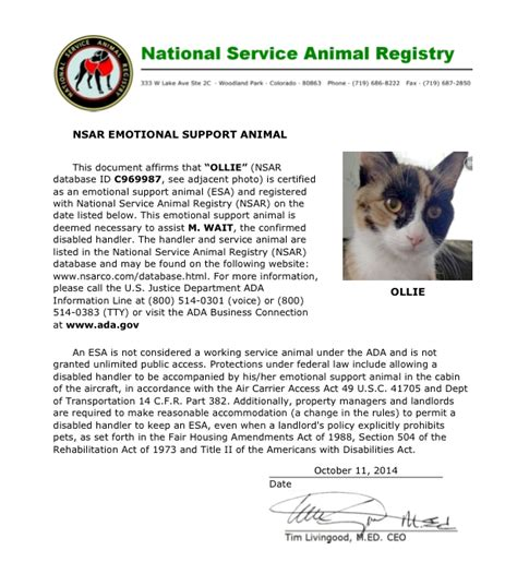 Emotional Support Animal Letter Cat Get An Emotional Support Animal To Help With Anxiety And Depression In College