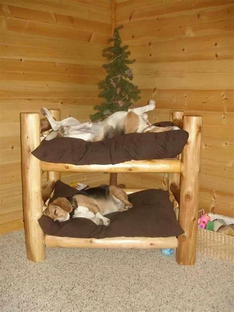 homemade dog beds homemade doggie bunk beds pet beds pinterest
