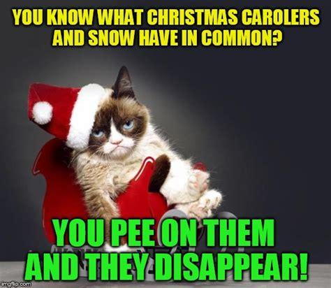 Grumpy Cat Snow Meme - no snow imgflip