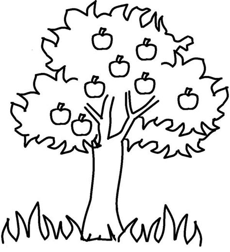 jungle tree coloring page free coloring pages of jungle tree