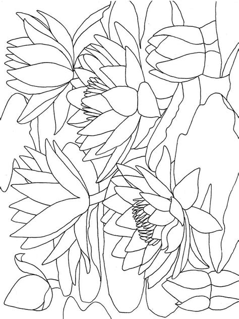 coloring pictures of lily flowers monet coloring pages water lilies