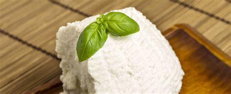 come cucinare la ricotta fresca ricotta 15 idee per i tuoi piatti agrodolce