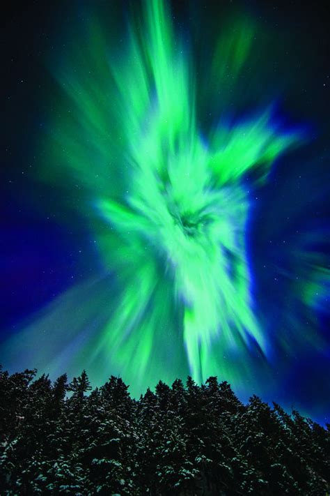 of alaska northern lights how to see the northern lights in alaska wheretraveler