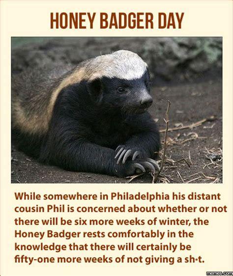 Meme Honey Badger - honey badger dont give a shit meme