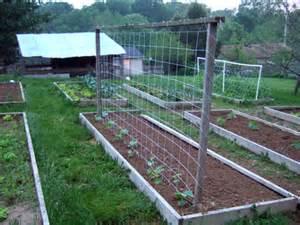 Building A Garden Trellis gardendesk building a trellis for the cucumbers
