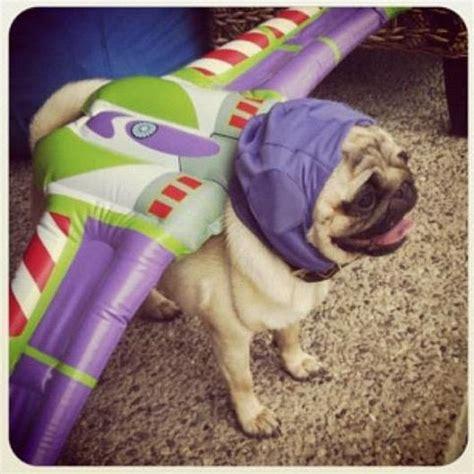 buzzfeed puppy buzz lightyear costume