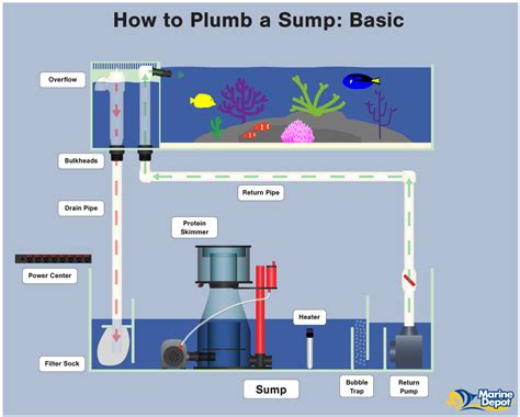 how to plumb a how to plumb a sump basic intermediate and advanced
