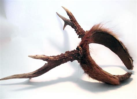 deer antler headband the bobbu