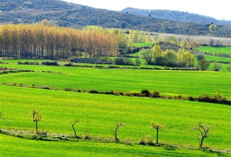 fotos de paisajes naturales ecolog a verde bellas