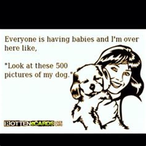 Crazy Dog Lady Meme - 1000 images about cat lady for life on pinterest crazy