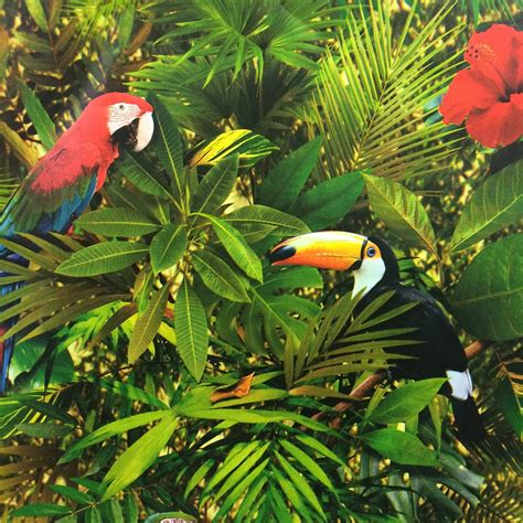 Country Style Home Interiors by Muriva Tropical Jungle Wallpaper 102555