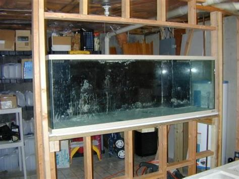 saltwater aquarium in wall 180 gallon in wall reef durso s 180 gallon in wall tank reef central online