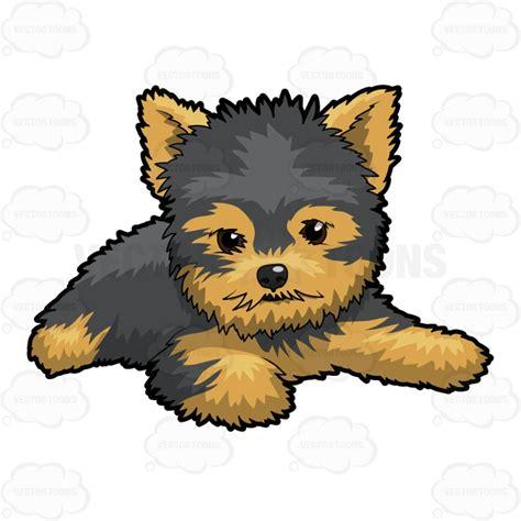 when do yorkie puppies calm puppy relaxing on floor vector clip