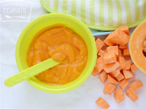 vegetables 4 months baby fall vegetable mashers 4 months once a month meals