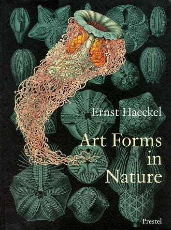 art forms in nature ernst haeckel art forms in nature art