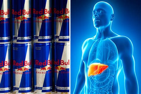 energy drink liver you won t believe how much damage bull does to your