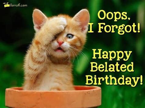 Belated Birthday Meme - happy birthday meme hilarious funny happy bday images