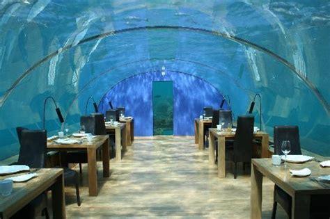 ithaa undersea restaurant ithaa picture of ithaa undersea restaurant rangali