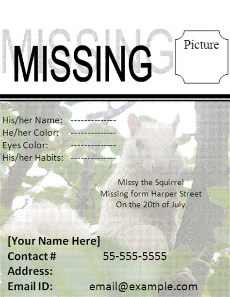 missing cat poster template free business templates