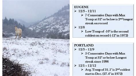 wet cold and dry 2013 sets weather records in eugene kval