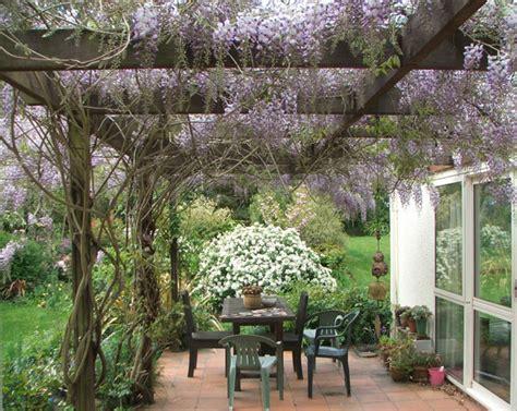 pergola with wisteria vines handcrafted pergola for a