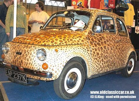 types of fiats fiat 500 in photograph 44 of 114