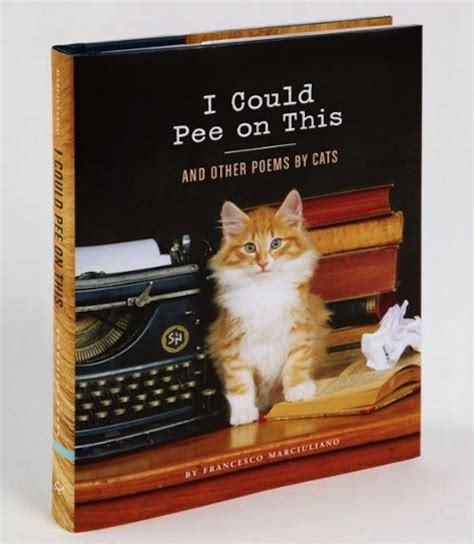 i cats books a book of poems written by cats designtaxi