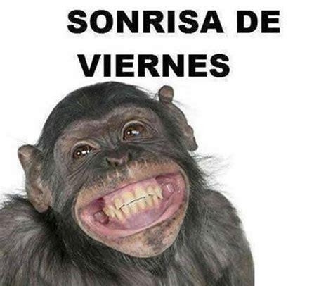 imagenes de lunes a viernes memes d 237 a viernes el humor dedicado al mejor d 237 a de la