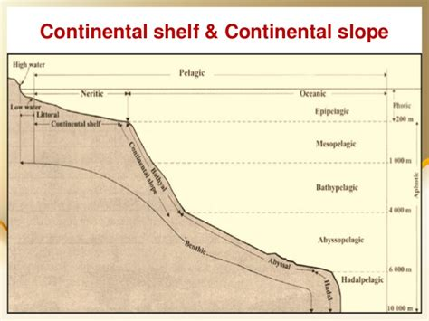 geneva convention on the continental shelf the best