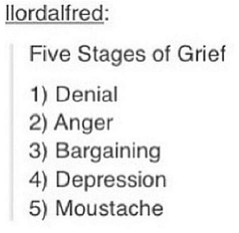The Stages Of Grief Vacation Edition by 3130 Best Images About Meme To The Rescue Fan