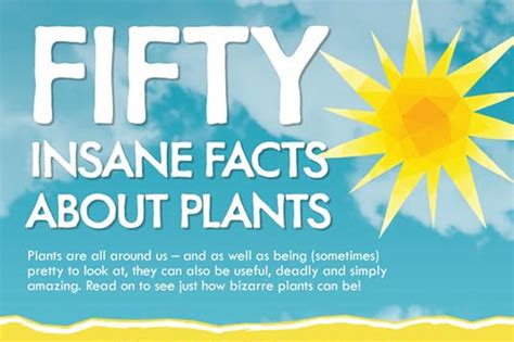 infographic edible medicinal or just bizarre here are 50 amazing facts about plants 50 plant